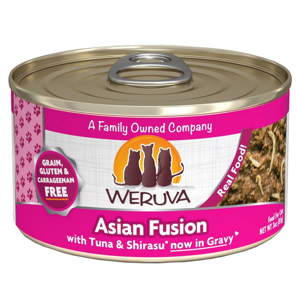 Asian Fusion - Canned - Cat